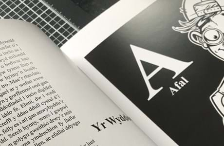 Swansea illustrator creates book based on Welsh alphabet